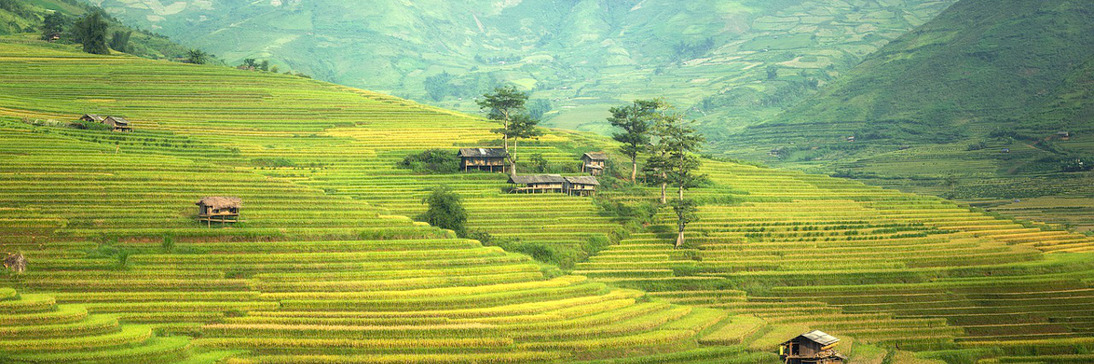 家とか土地とかの価値ってどうやって調べればいいの?